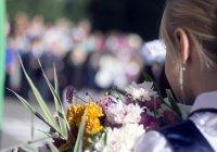 Российские школьники останутся без линеек 1 сентября