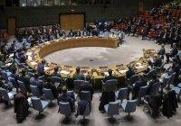 Россия подготовила новый проект резолюции СБ ООН по Сирии