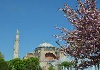 МИД РФ прокомментировал превращение собора Святой Софии в мечеть