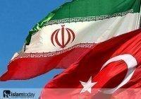 Взаимовлияние: из истории мусульманских политических движений ХХ в. в Турции и Иране