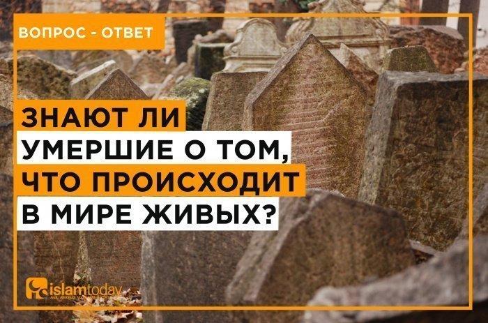 Знают ли умершие о том, что происходит в мире живых? (Источник фото: unsplash.com)