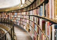 Первые модельные библиотеки появятся в Ингушетии