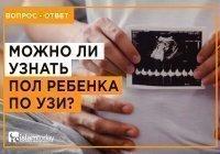 Можно ли мусульманам узнать пол ребенка при помощи УЗИ?