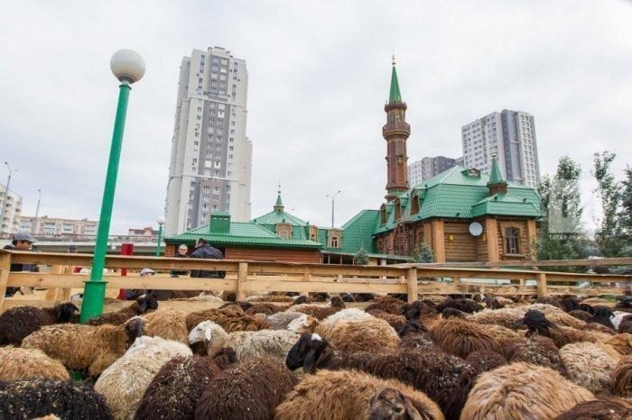 Забой жертвенных животных начнется после праздничного намаза и продлится 3 дня