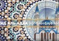 Хадж, день Арафа и Курбан-байрам: узнай все на медиаресурсах ДУМ РТ