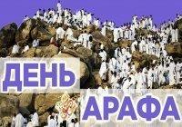 Как рекомендуется провести день Арафа?