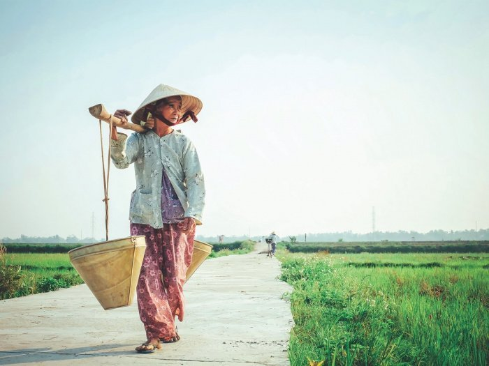 По данным на 29 июля, во Вьетнаме зафиксировано 446 случаев коронавируса, при этом 369 человек выздоровели