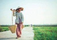 В ВОЗ отвергли опасность вспышки коронавируса во Вьетнаме