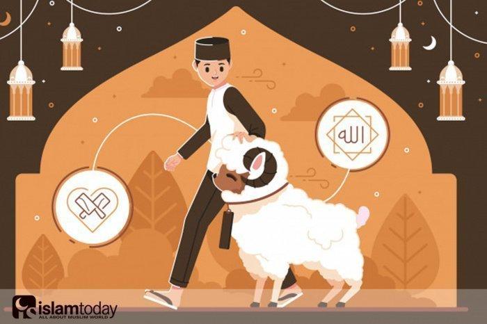 Доказательства из Корана о необходимости совершения жертвоприношения. (Источник фото: freepik.com)
