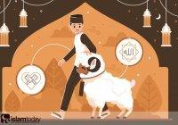 Факты о празднике Курбан-байрам, которые должны знать не только мусульмане