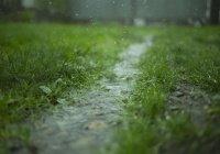 В России спрогнозировали ливни и заморозки до конца июля