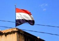 В Йемене правительство и повстанцы договорились о создании нового правительства