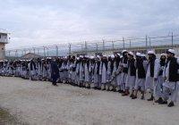 Кабул освободил более 4,5 тысячи талибов