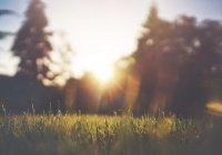 В ряде регионов России прогнозируется «опасное солнце»