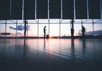 Названо число россиян, покинувших страну в день запуска международных рейсов