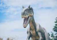 Обнаружен ближайший родственник динозавров