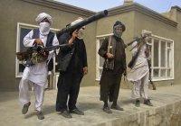 В «Талибане» рассказали, где берут оружие