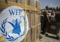 ООН поможет Ливану справиться с дефицитом продовольствия
