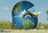 Формируется экологическая теология