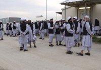 «Талибан»: ИГИЛ намерено сорвать межафганские переговоры