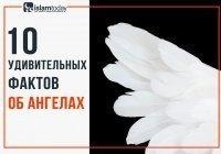 Вся правда об ангелах