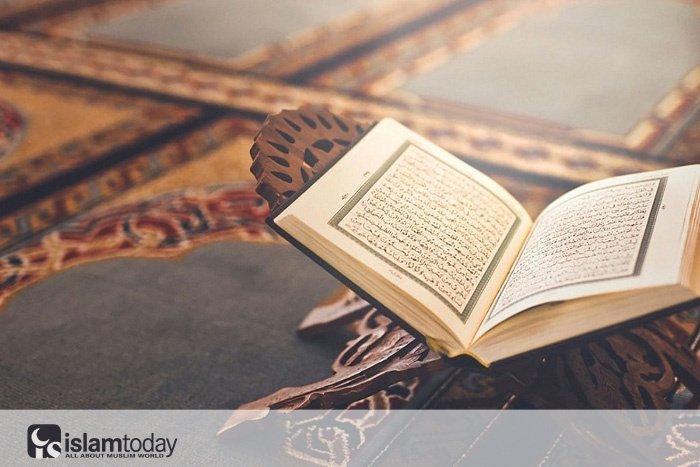 Знание и богобоязненность