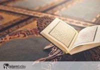 Нужно ли мусульманину быть умным?