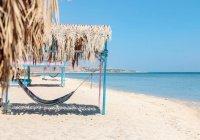 В Египте намерены открыть пирамиды и увеличить число гостей в отелях