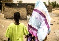 Организация исламского сотрудничества поможет Мали выйти из кризиса