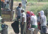 В Туркменистане нарушителей масочного режима отправляют собирать хлопок