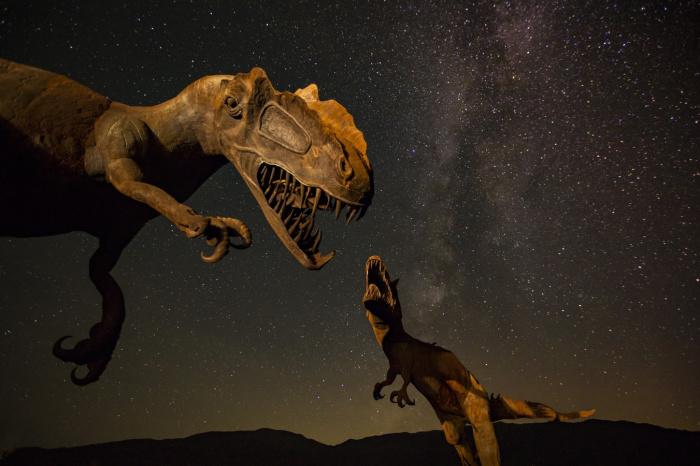 Предполагается, что взрослый тираннозавр весил примерно 7 тонн