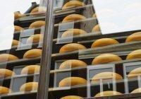 Развенчан распространенный миф о плавленом сыре