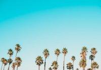 Перечислены наиболее бесполезные траты в отпуске