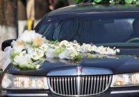 В Ингушетии духовенство займется предотвращением ДТП со свадебными кортежами