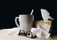 Найден вирус, который способен остановить эпидемию гриппа