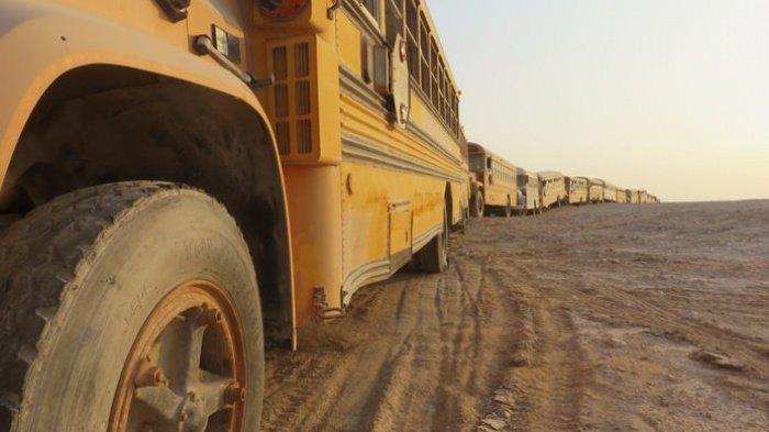 20 000 автомобилей посреди пустыни, или как выглядит кладбище машин? (ФОТО)