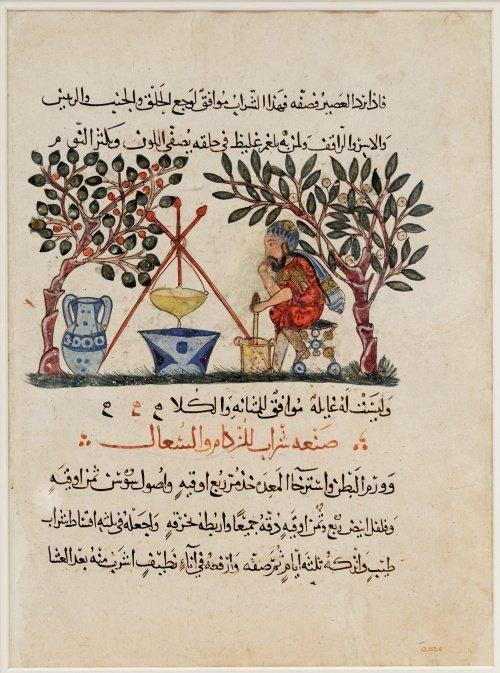 Перевод на арабский язык работы древнегреческого врача и фармаколога Педания Диоскорида ``О лекарственных веществах``
