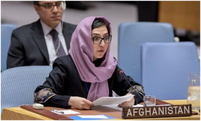 Адела Раз на заседании ООН.