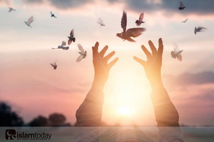 Основа всего - это сердце. (Источник фото: freepik.com)