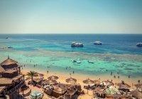 Стало известно, сколько туристов посетили Египет после открытия границ