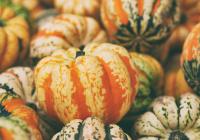 Перечислены самые важные витамины осенью
