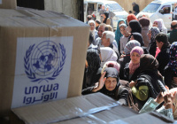 Германия пожертвовала 53 млн евро на помощь Палестине