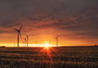 Выявлено новое последствие климатической катастрофы