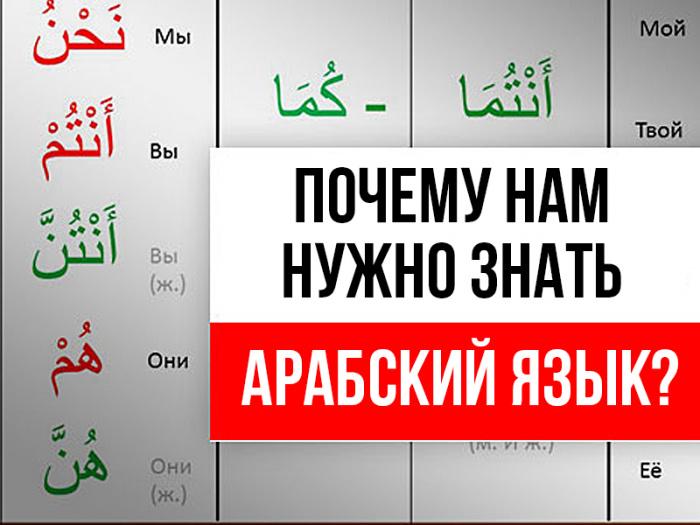 Почему мусульманам желательно изучать арабский язык?