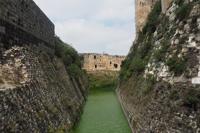 Вид на средневековый ров, в котором обитает сообщество водяных змей