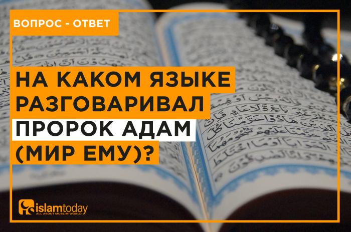 На каком языке разговаривал Пророк Адам, мир ему? (Источник фото: unsplash.com)