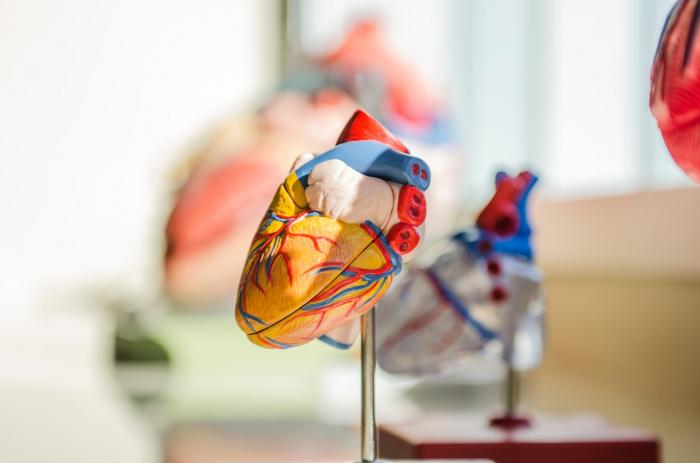 Во время пандемии коронавируса в мире увеличилось число внезапных смертей от заболеваний сердца дома