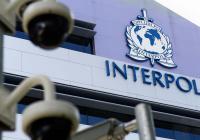 МВД: в базе Интерпола - около 50 тыс. записей о террористах со всего мира