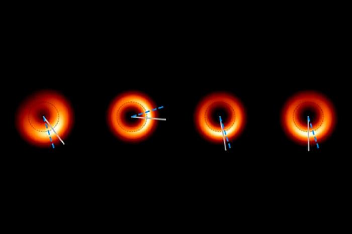 (Изображение: Wielgus) Дальнейшие исследования позволят астрономам получить более подробные изображения черной дыры