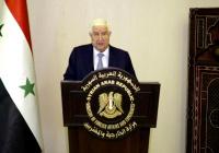 Глава МИД Сирии обвинил США и Турцию в оккупации